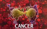 गौ मूत्र से कैंसर का इलाज ! (Part – 2)